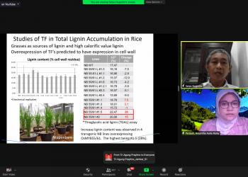 Screenshot 2020-10-26 at 03.43.53